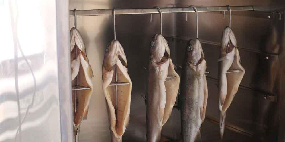 Wędzona Ryba - Hak 20